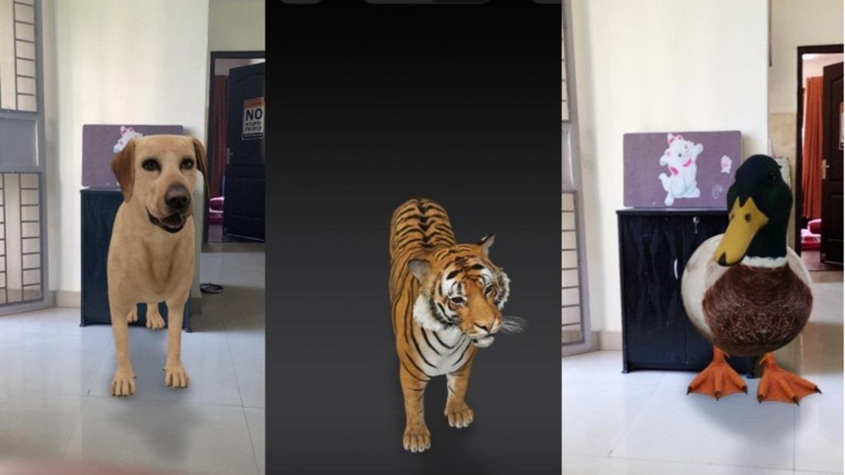 animali 3d